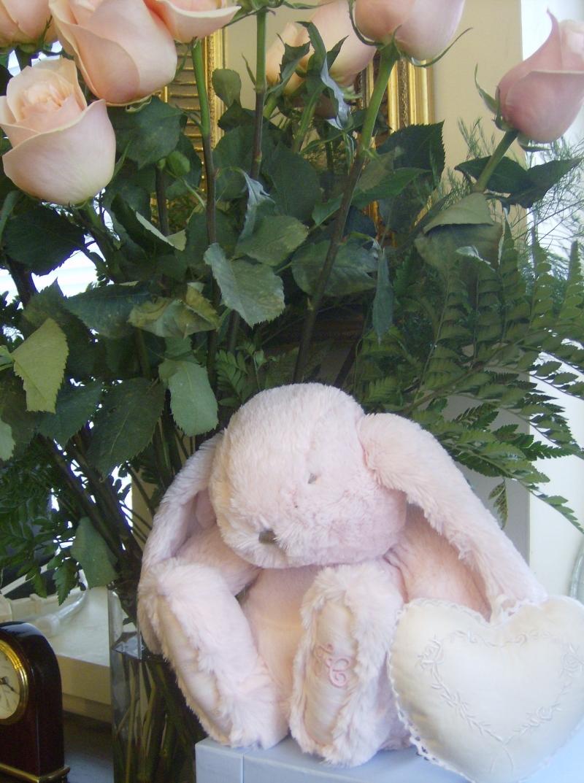 Roses_Lapin_25_137