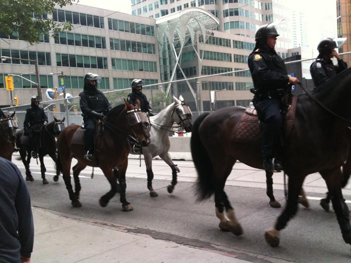 même le cheval a un casque de protection!