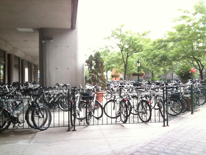 derrière l'hôtel, vélos des flics