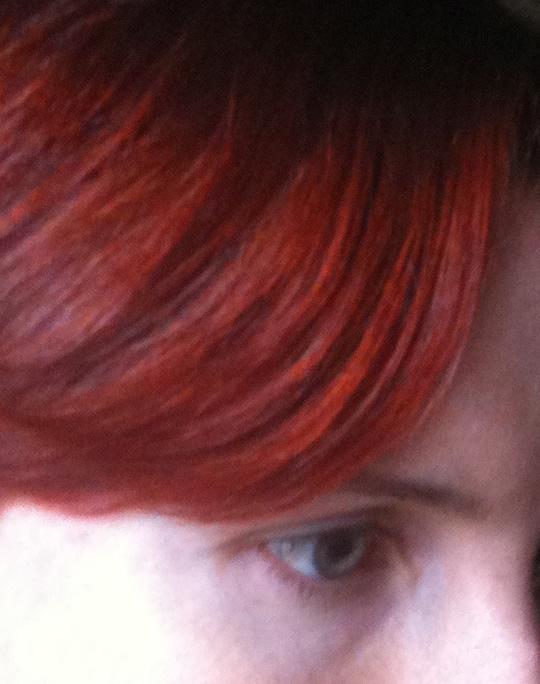 La th orie du poisson rouge c 39 est pas moi je l 39 jure for Poisson rouge artificiel