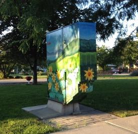 Boîte électrique joliement décorée