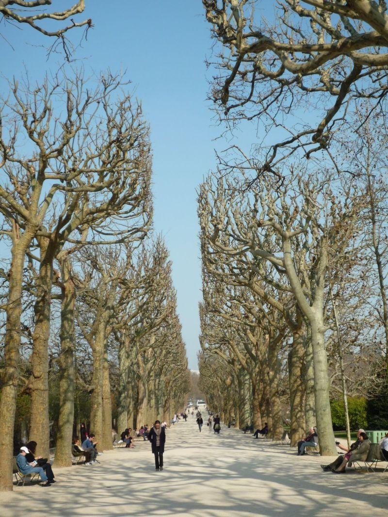 jardin des plantes, Paris, mars 2012