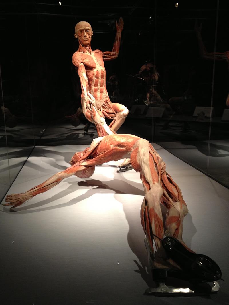 body13
