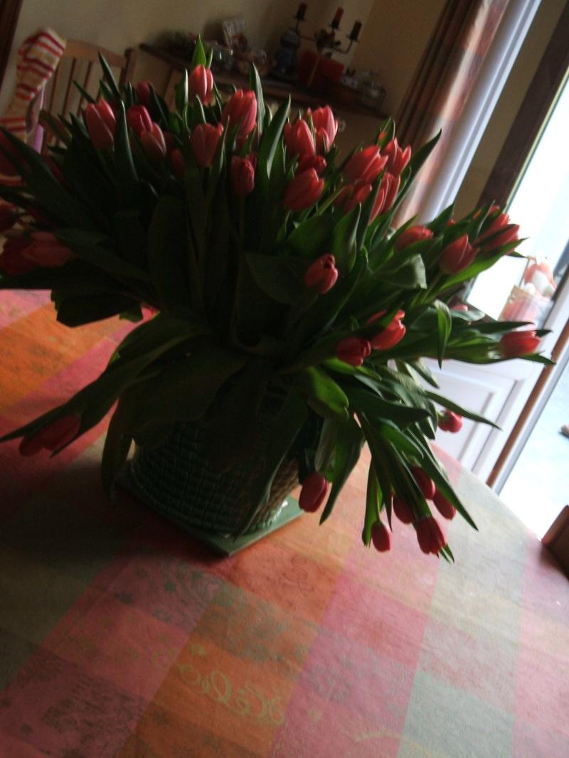 Tulipes2 220407