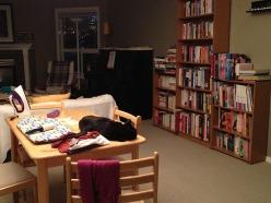 Pile de trucs à repasser: chemises, pull, chat...