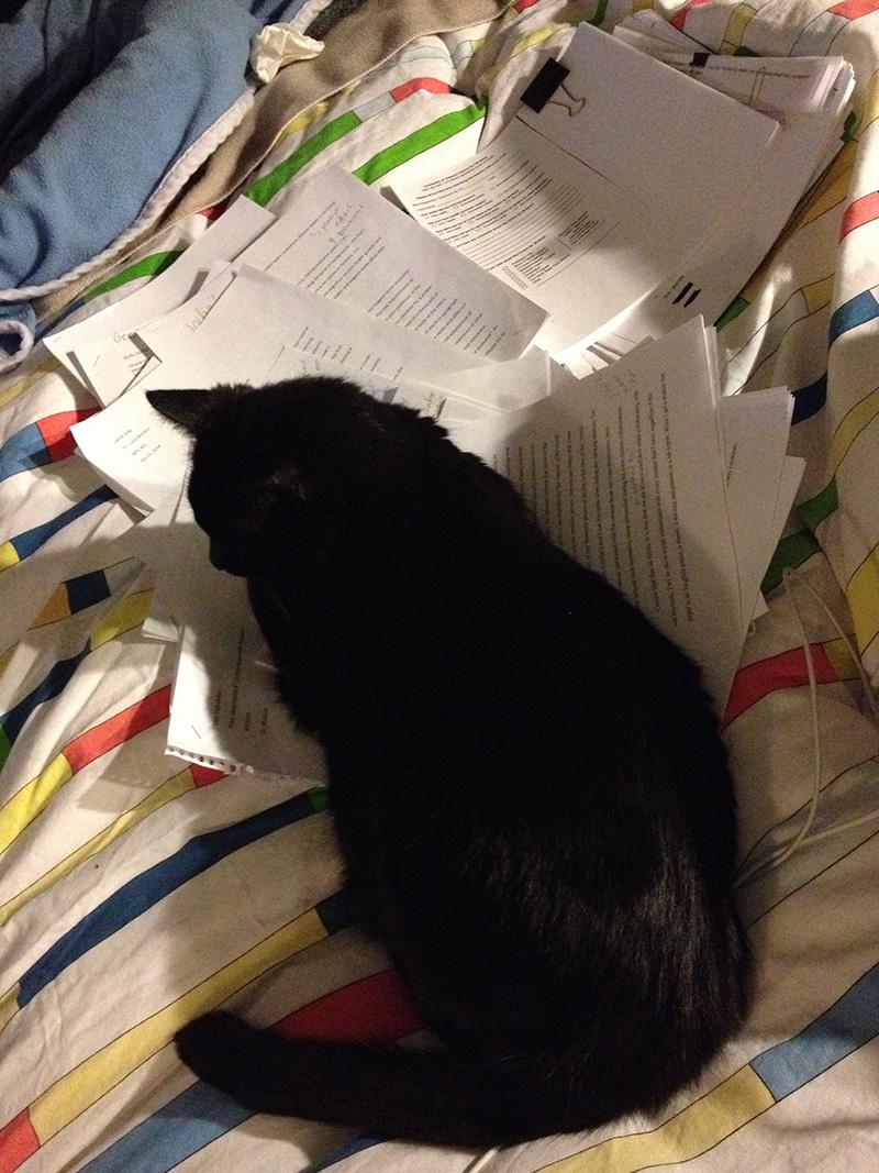 Calinette m'aide à corriger les 180 copies en retard...