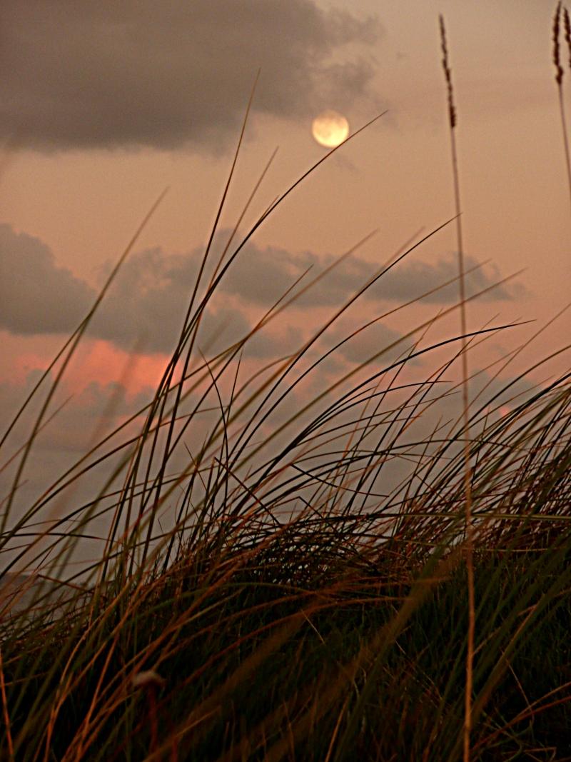 Lune posée