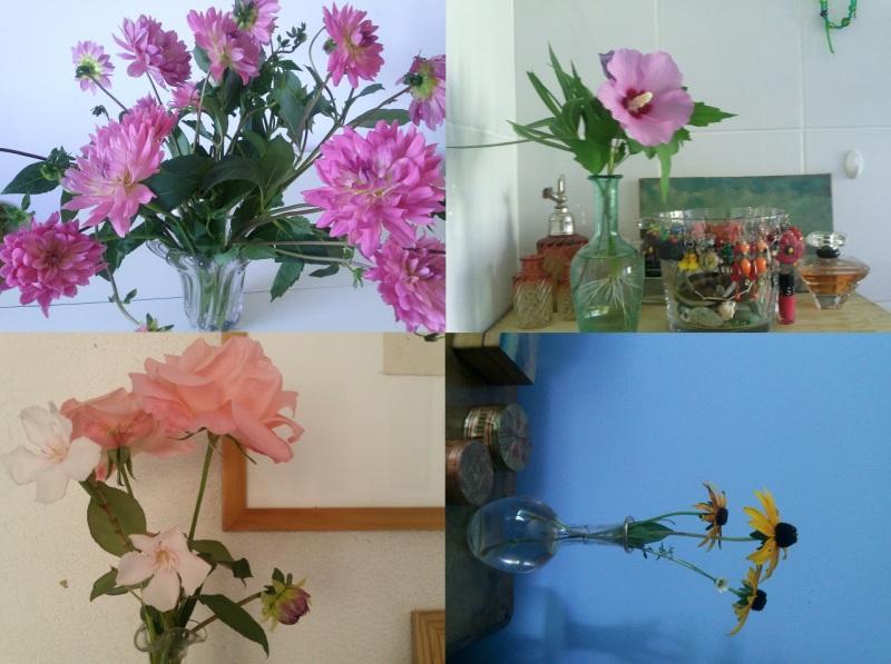fleurs de Mahie